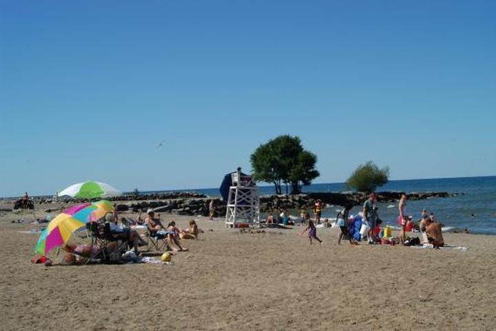 Pet Friendly Hamlin Beach State Park Campground