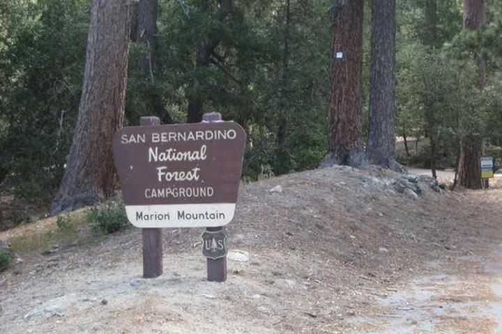Pet Friendly Campgrounds in Idyllwild, CA - Bring Fido