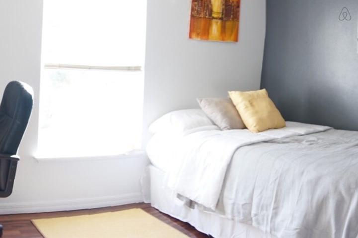 Pet Friendly Malabar Airbnb Rentals