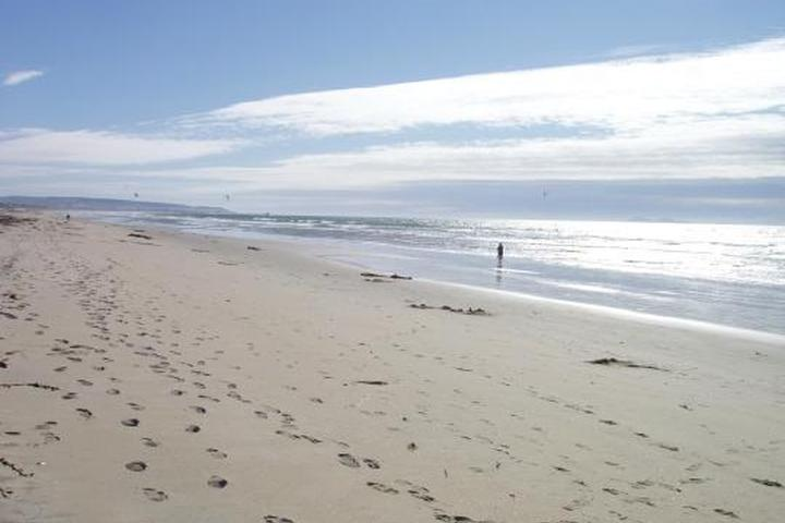 Pet Friendly Silver Strand SB Campground