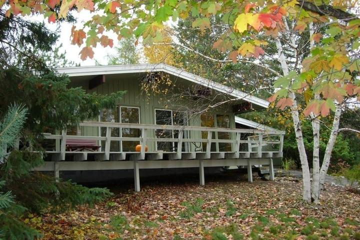 Pet Friendly Boyne City Airbnb Rentals