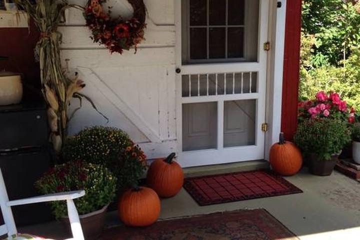 Pet Friendly Upper Black Eddy Airbnb Rentals