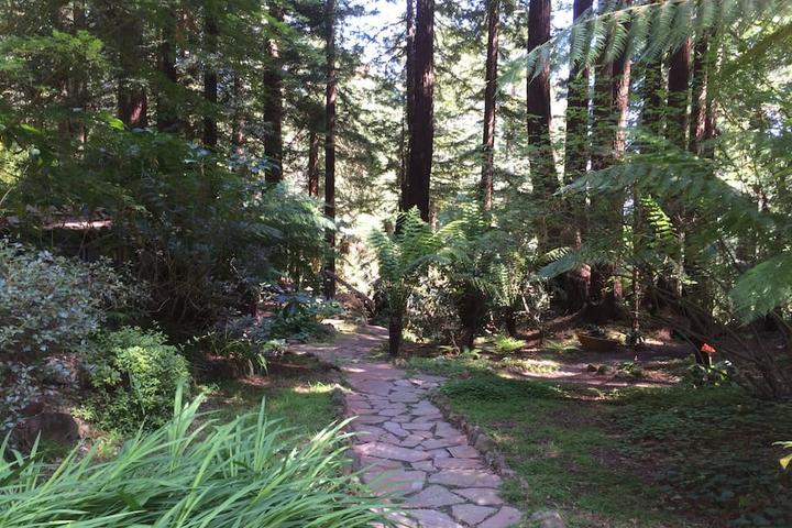 Pet Friendly Occidental Airbnb Rentals