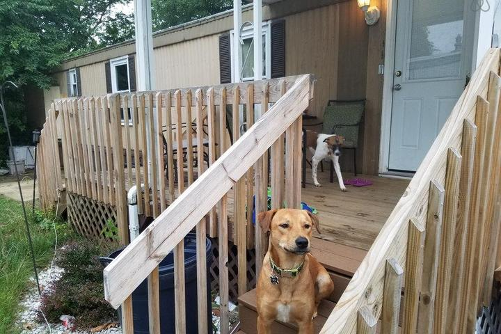Pet Friendly Whiting Airbnb Rentals