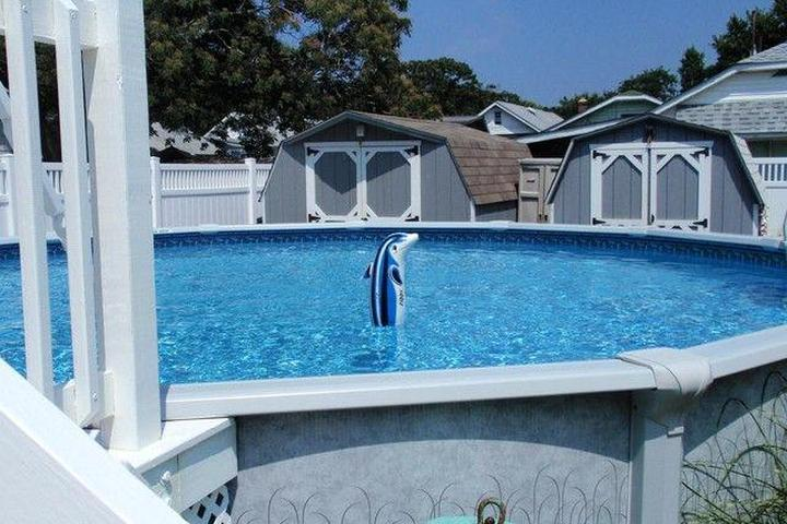 Stupendous Pet Friendly Vacation Rentals In Cape May Nj Bring Fido Download Free Architecture Designs Intelgarnamadebymaigaardcom