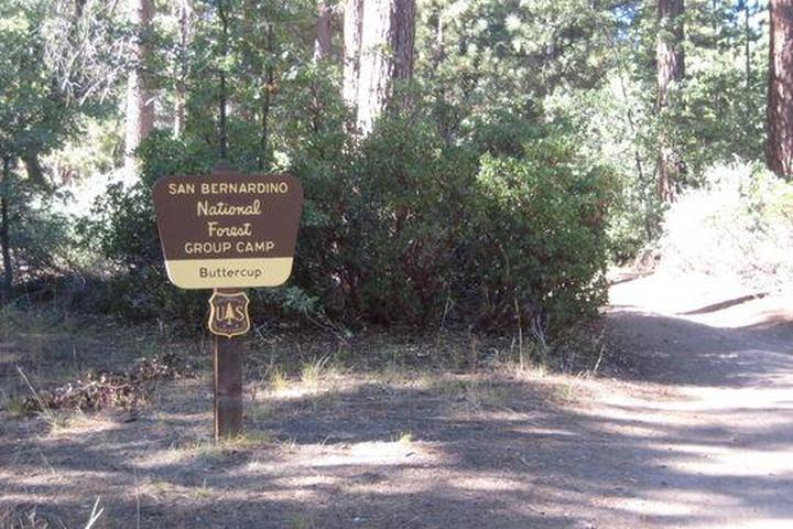 Pet Friendly Buttercup Group Camp Campground