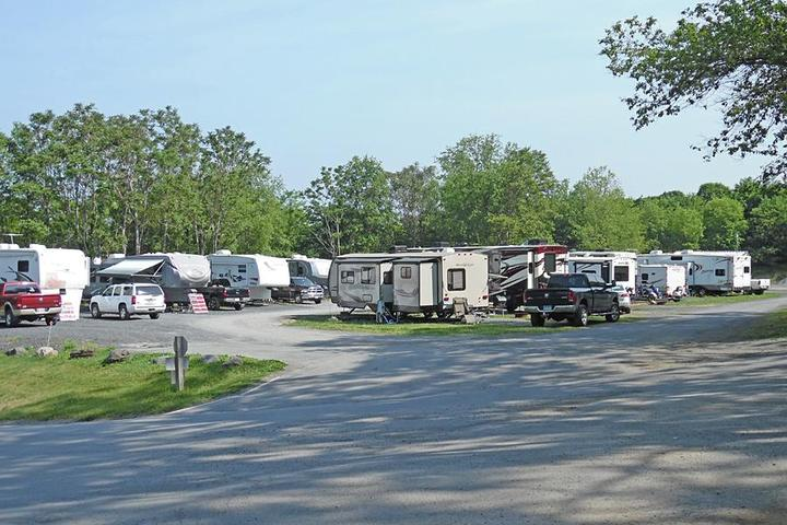 Pet Friendly Black Bear Campground