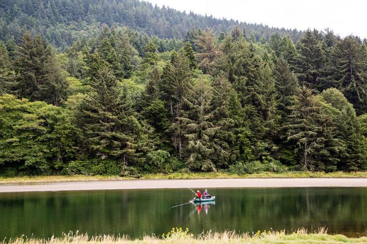 Pet Friendly Pacific City RV & Camping Resort