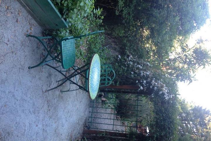 Pet Friendly Scotts Valley Airbnb Rentals