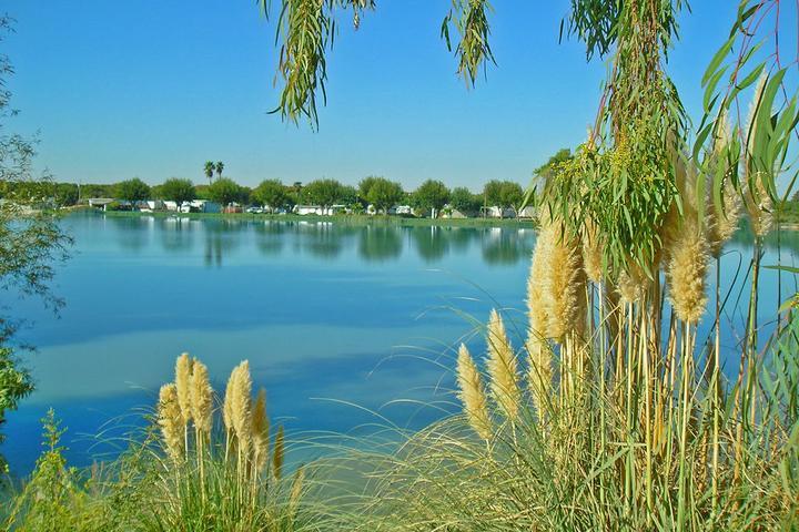 Pet Friendly Lake Minden RV Resort