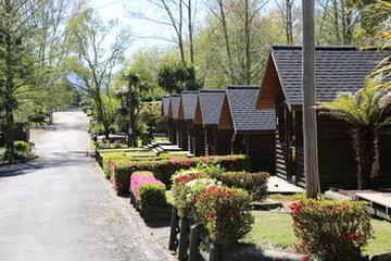 Pet Friendly Rotorua Thermal Holiday Park
