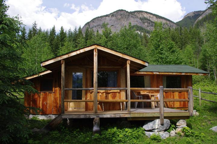Pet Friendly Field Airbnb Rentals