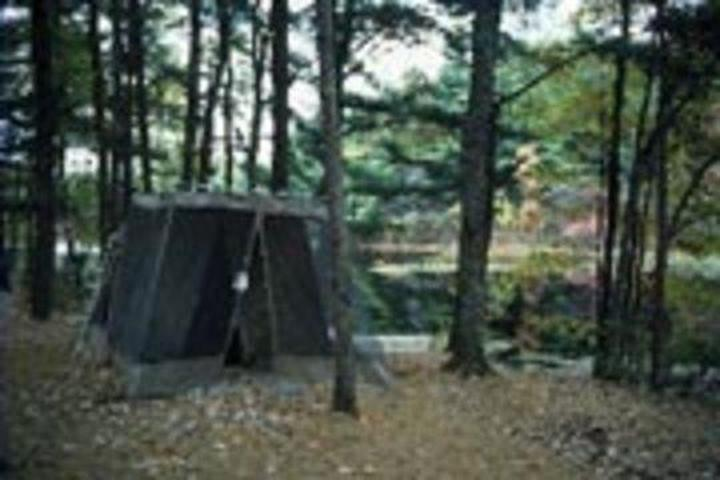 Pet Friendly Harold Parker State Forest Campground