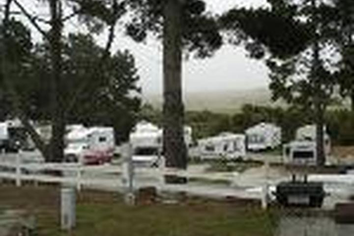 Pet Friendly Pelican Point RV Park