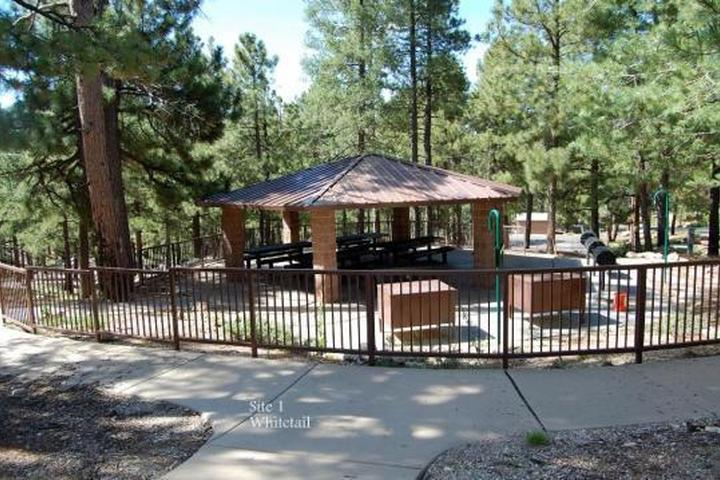 Pet Friendly Whitetail Campground