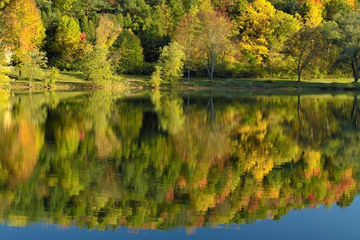 Pet Friendly Lake Glory Campground