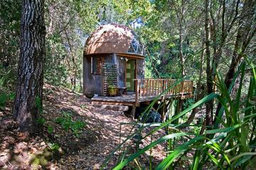 Pet Friendly Freedom Airbnb Rentals