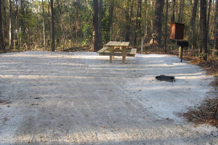 Pet Friendly Givhans Ferry Campground