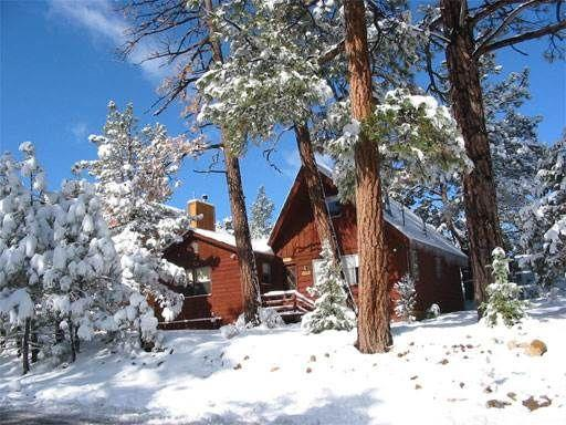 Big bear cabin 4u pet policy for Big bear 2 person cabin