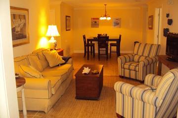 Pet Friendly Sea Island Airbnb Rentals