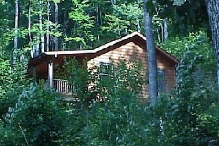 Pet Friendly Moonshine Creek Campground