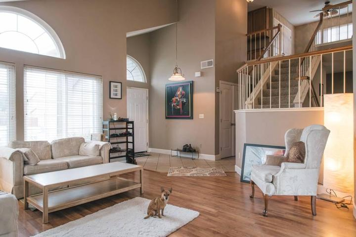 Pet Friendly American Canyon Airbnb Rentals