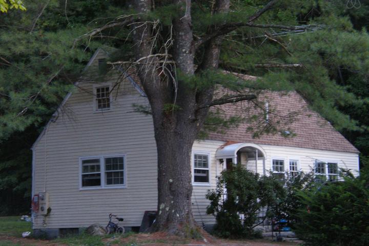 Pet Friendly Bow Airbnb Rentals