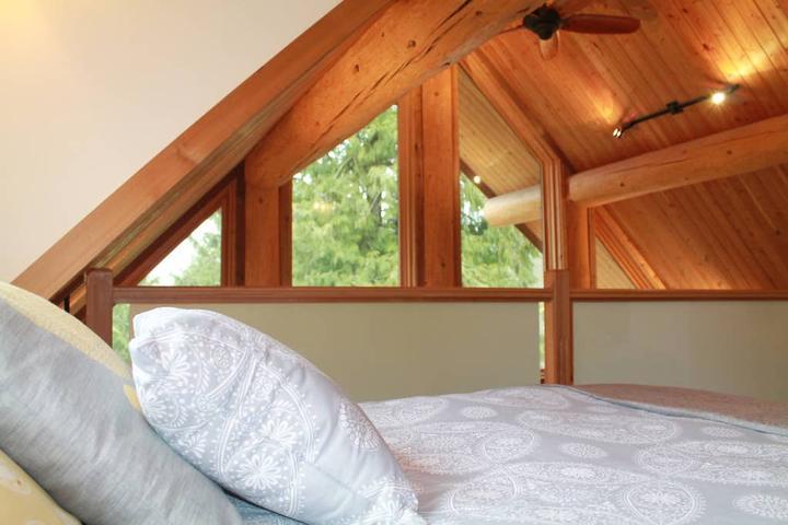 Pet Friendly Coalmont Airbnb Rentals