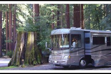 Pet Friendly Santa Cruz Redwoods RV Resort