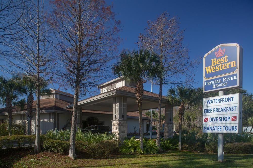 Dog Friendly Hotels Crystal River