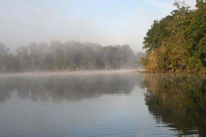 Pet Friendly Forkland Campground
