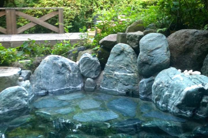 Pet Friendly Hakone Airbnb Rentals