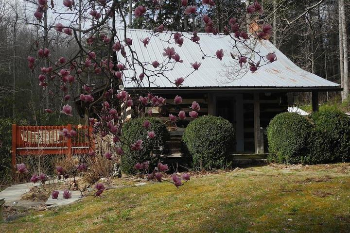 Pet Friendly Zirconia Airbnb Rentals