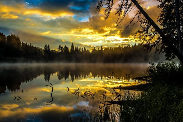 Pet Friendly Cobbett Lake Campground