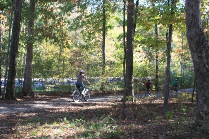 Pet Friendly Mammoth Cave Campground