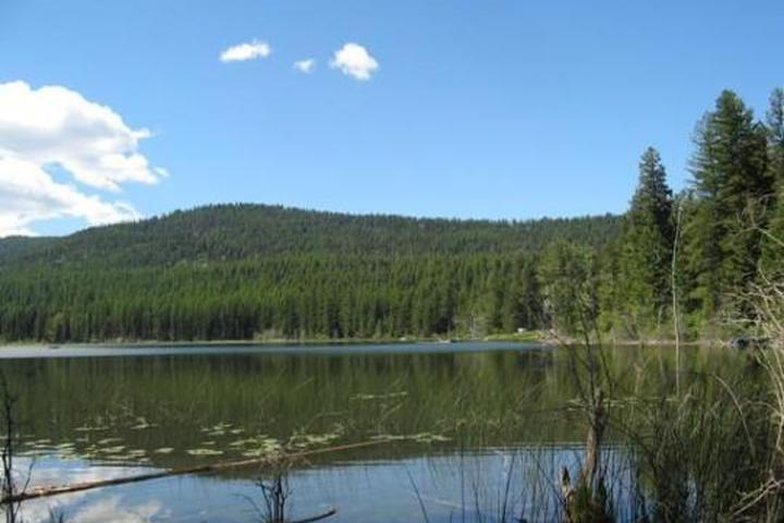 Pet Friendly Lost Lake Group Unit Campground