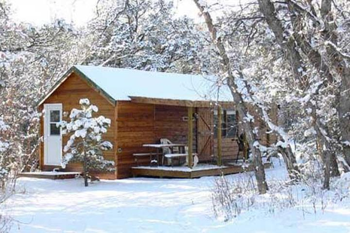 Pet Friendly Campgrounds in Cripple Creek, CO - Bring Fido