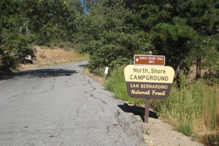 Pet Friendly North Shore Campground
