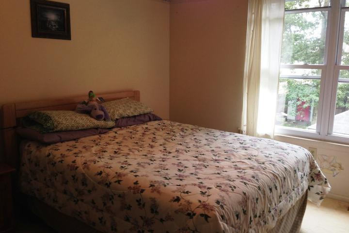 Pet Friendly Little Egg Harbor Airbnb Rentals