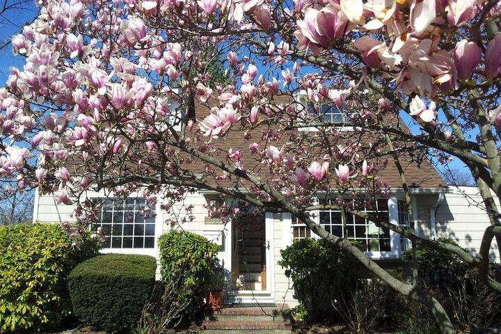 Pet Friendly East Islip Airbnb Rentals