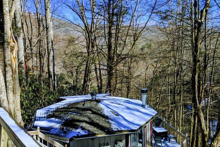 Pet Friendly Foscoe Airbnb Rentals
