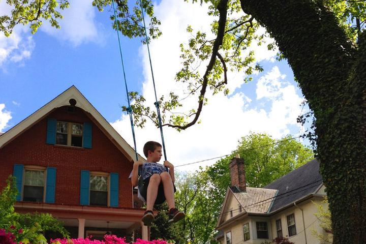 Pet Friendly Jenkintown Airbnb Rentals