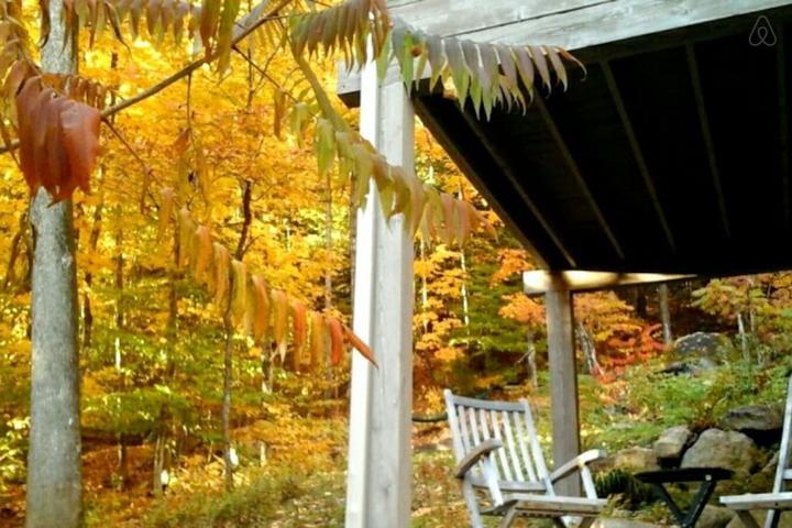 Pet Friendly Sainte Adele Airbnb Rentals