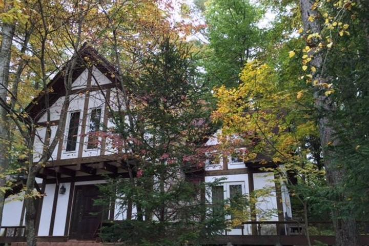Pet Friendly Karuizawa Airbnb Rentals