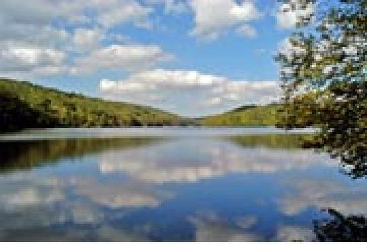 Pet Friendly Clarence Fahnestock State Park Campground