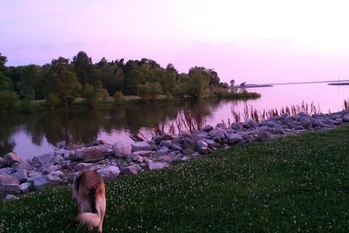 Pet Friendly Coles Creek Campground