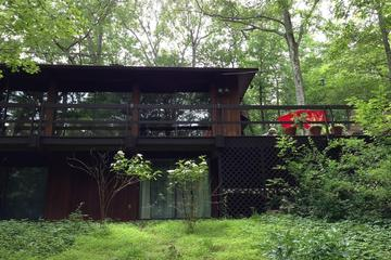 Pet Friendly Cold Spring Airbnb Rentals