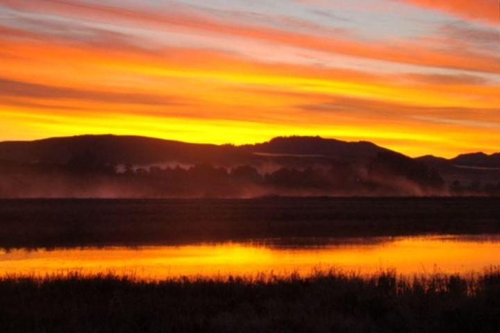 Pet Friendly Cottage on Inverness Bay