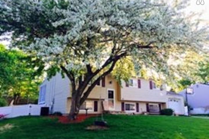 Pet Friendly Mount Arlington Airbnb Rentals