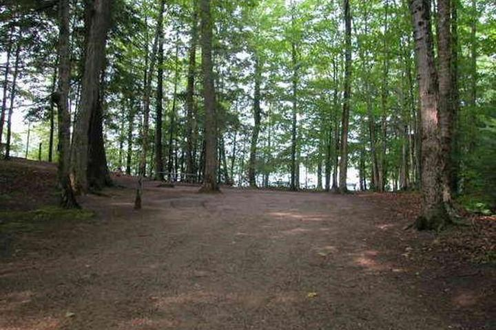 Pet Friendly Petes Lake Campground